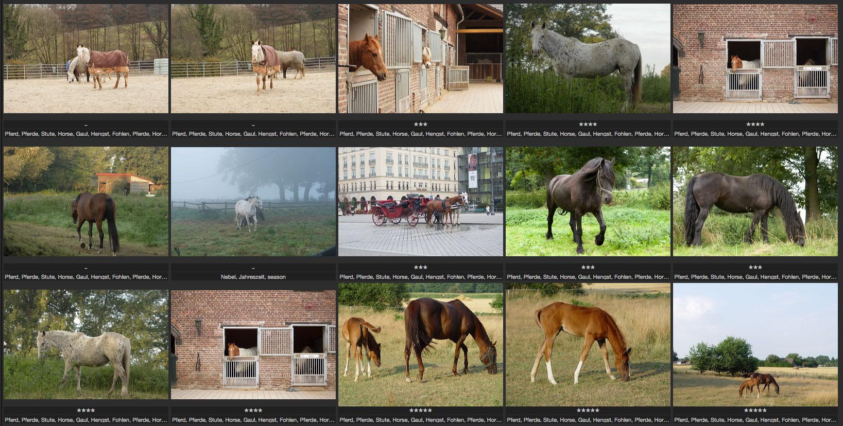 Schlüsselwörter Bilddatenbanken Verschlagworten Ivent Fotokurse