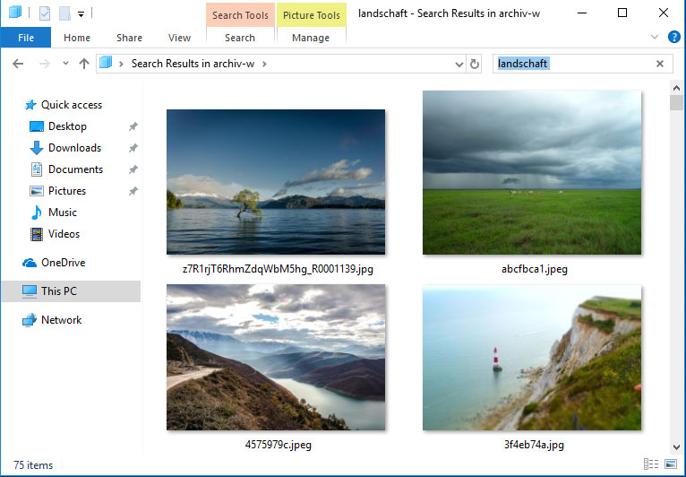 bilder-suchen-windows-edge